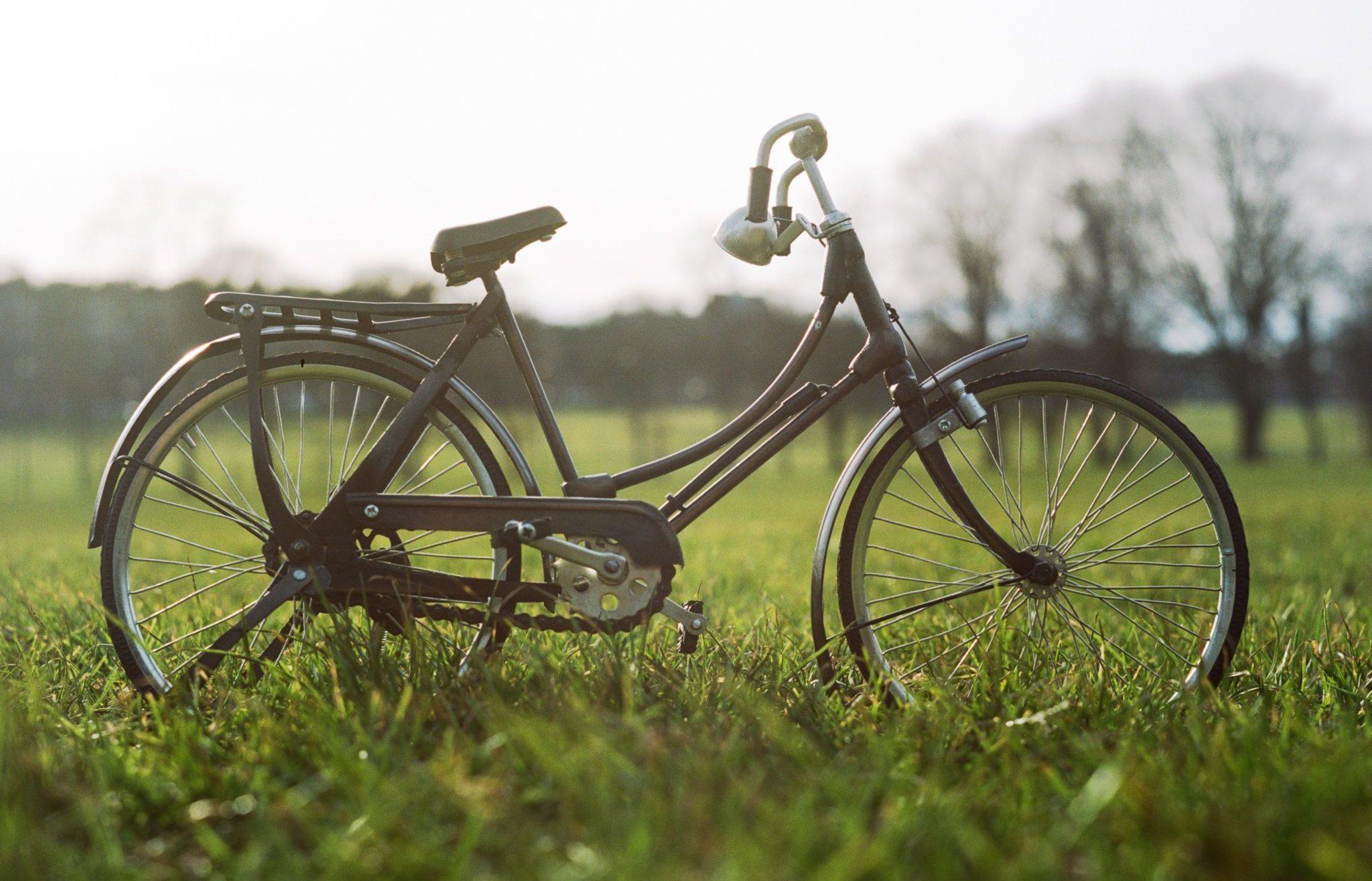 Le Temps des Cerises Fête du Vélo