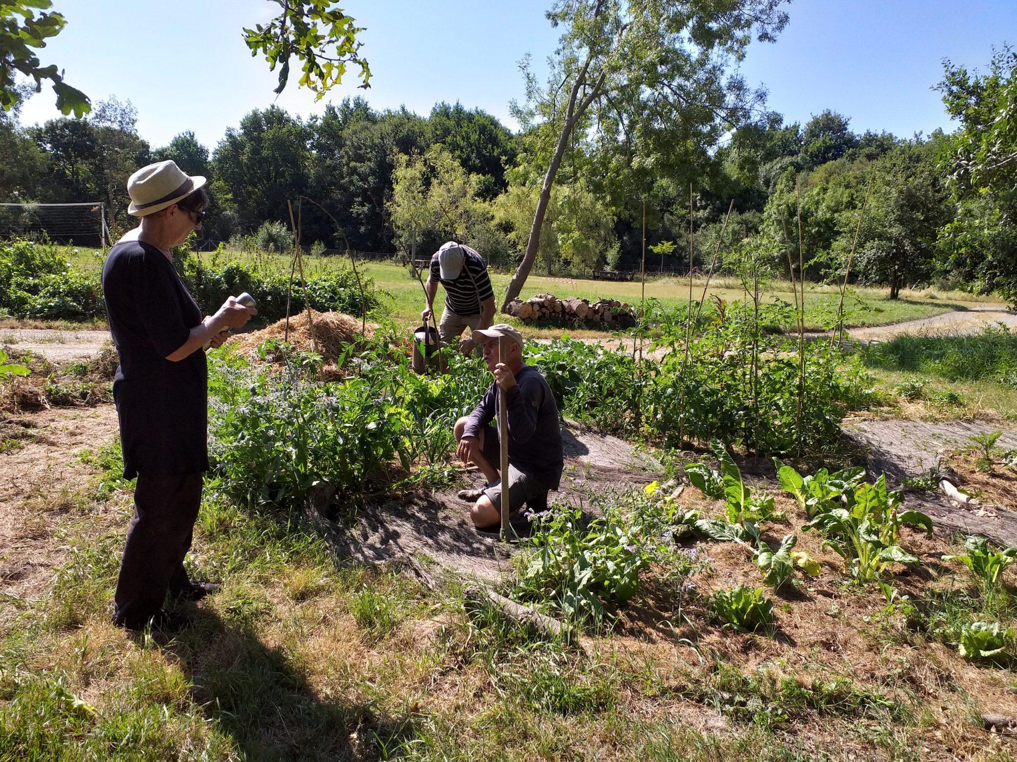 Le Temps des Cerises Jardinage et alimentation locale